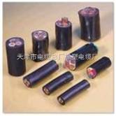 电焊机引接线价格,YCW电缆