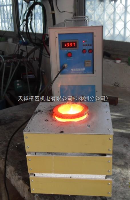 小型熔金炉 1-2kg金属熔炼炉(TX-15)